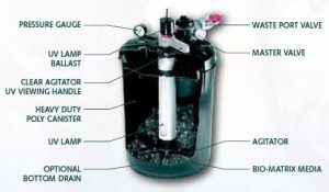 Pondmaster-Proline-Pressure-Filter-Diagram