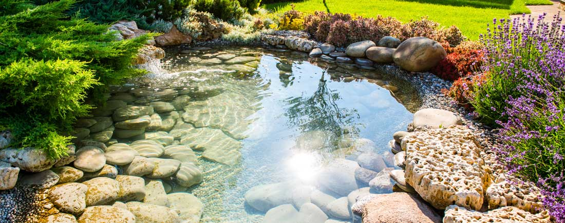 pond-supply-water-garden-wholesaler