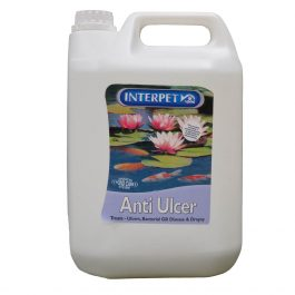 8779-Interpet-Anti-Ulcer-5liter