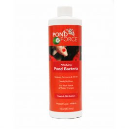PFNB16-Pond-Force-Nitrifying Bacteria 16oz