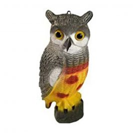 owl100-owl-decoy